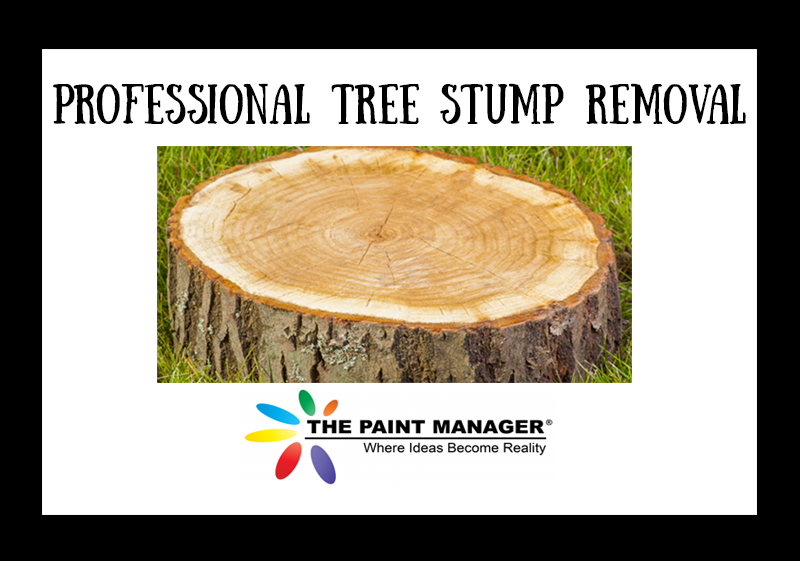 Why You Need To Hire Professionals For Tree Stump Removal