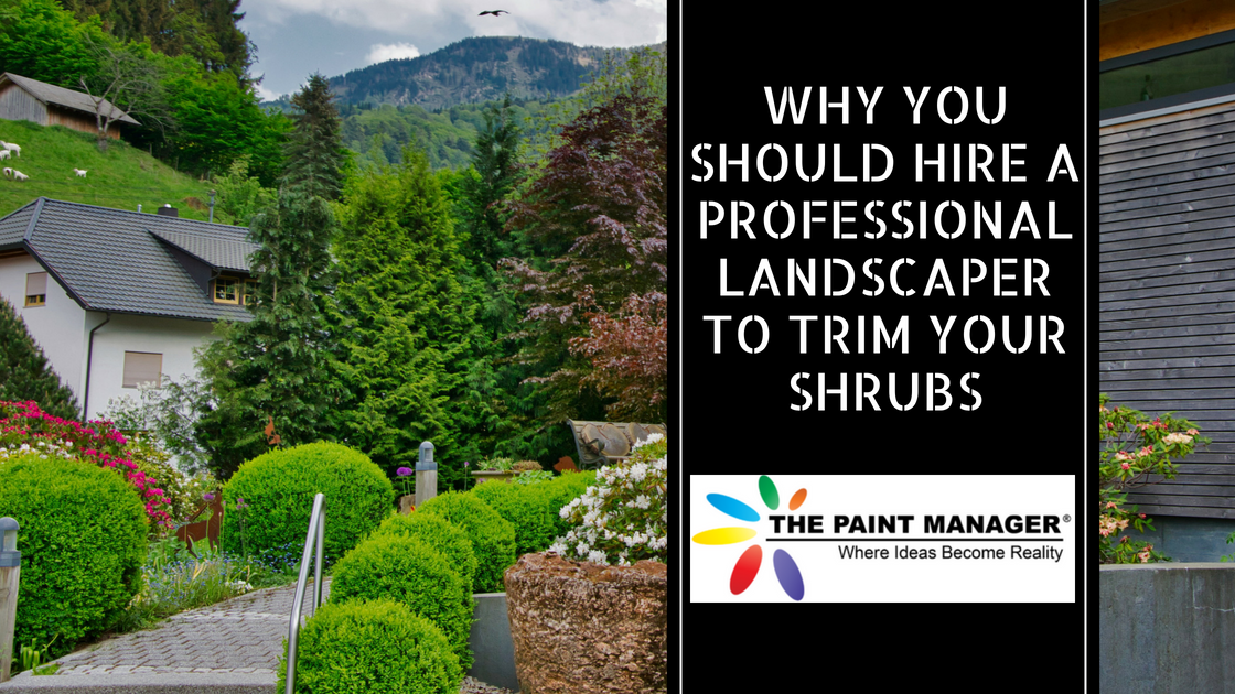 Why You Should Hire a Professional Landscaper to Trim Your Shrubs