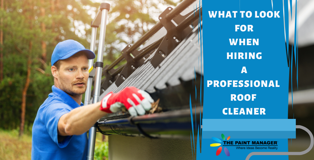 What to Look for When Hiring a Professional Roof Cleaner