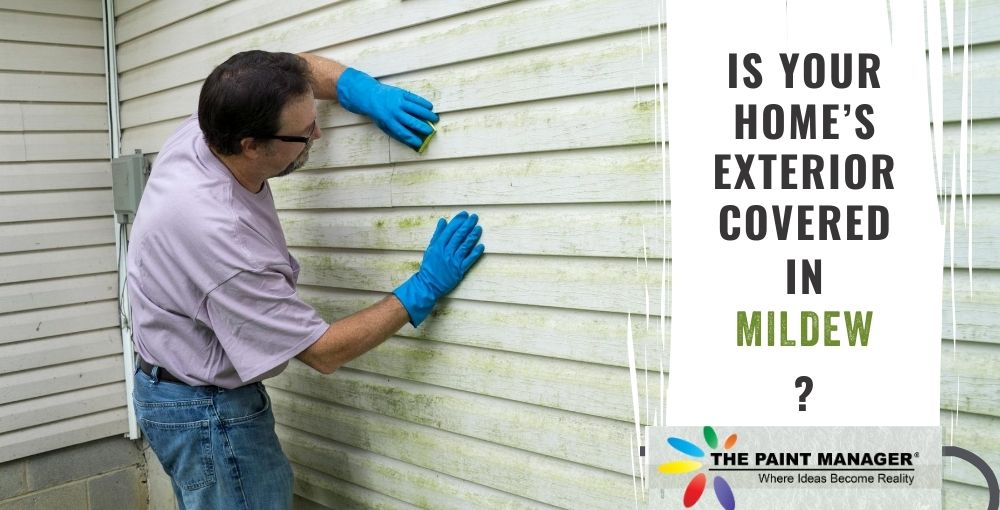 Is Your Home's Exterior Covered In Mildew?